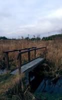 Small bridge by mateuszskibicki1