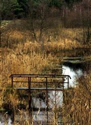 Small bridge 2 by mateuszskibicki1