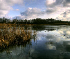 Lake - Jezioro by mateuszskibicki1