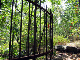 Nay Aug Bear Cage by macbeth3377