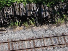 Rails and Rails by macbeth3377