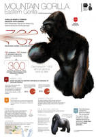 Mountain Gorilla angry version by memuco
