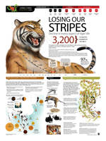 LOSING OUR STRIPES Done for WWF by memuco