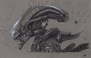 Alien by JeffLafferty