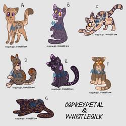 Kitten Adopts (Ospreypetal x whistlesilk) by MossclawArt