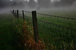 Early August Morning by MikeysPhotos