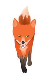 Fox by mijakai