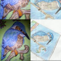 redraw vs olddraw eisvogel by RufusShinrareno