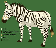 Grevy's Zebra Character by stuffed
