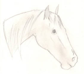 Horse Sketch: 'Realistic' by Eponaswings