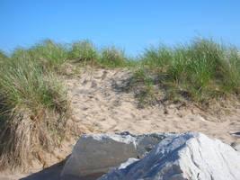 Beach Path by RhoswenFaerie