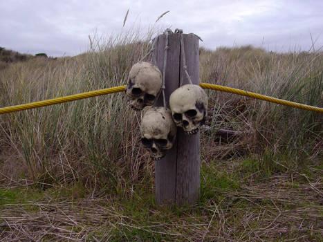 skulls on a post 01 by Treeclimber-Stock