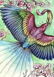 Spring Bird - ACEO by windfalcon