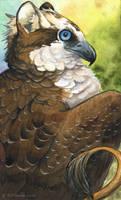 Osprey Gryphon by windfalcon