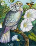 Hedge Bindweed Nectarbird by windfalcon
