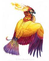 Phoenix Spot - Art for Winged Fantasy by windfalcon