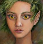 Owl Eyes by windfalcon