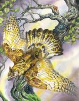 Owline Iolar by windfalcon
