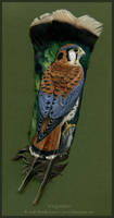 Wingcatcher by windfalcon