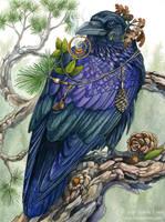 Sylvan Visions by windfalcon