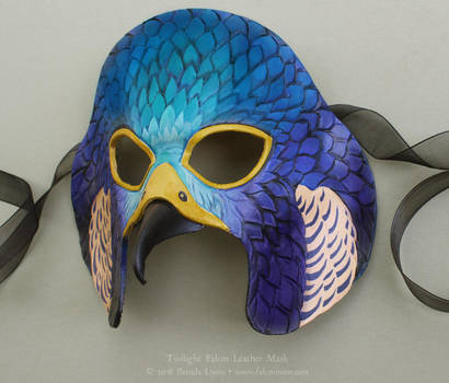 Twilight Falcon Leather Mask by windfalcon