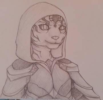 My Skyrim character by Darkrai4813