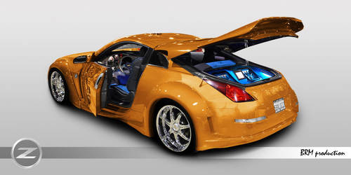 The 350Z by Necro-1000