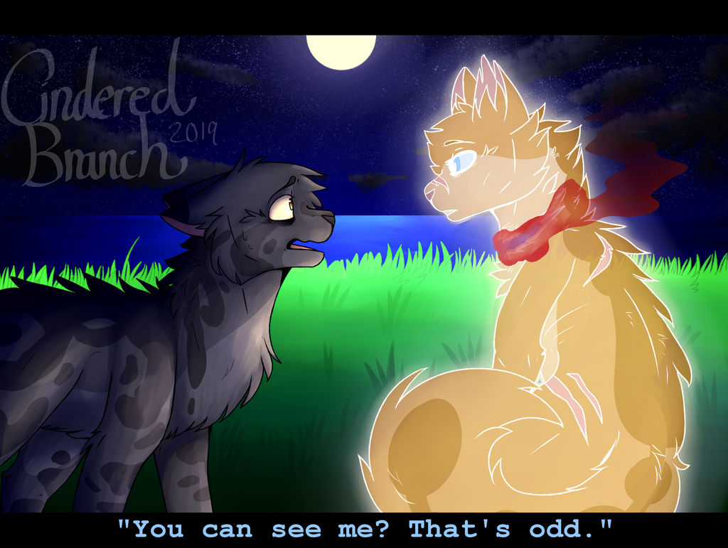 You can see me? That's odd. by CinderedBranch