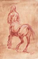 Centaur study by Ryuvhiel