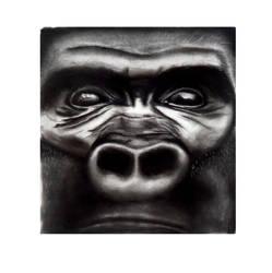 Gorilla B andW by Tonhiox