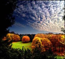 Autumn I... by MichiLauke