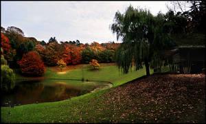 Autumn II... by MichiLauke