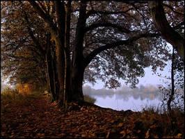 Wolni Lake Morning Mist... by MichiLauke