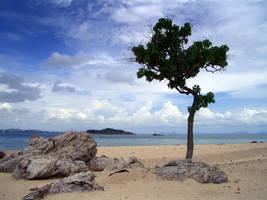 LOST beach... by MichiLauke
