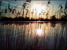 Lake Wolni II... by MichiLauke