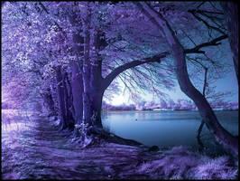 Spring Wolni infrared... by MichiLauke