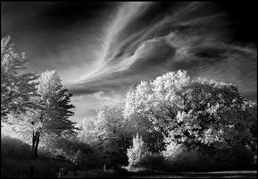 Skybirdclouds II infrared... by MichiLauke