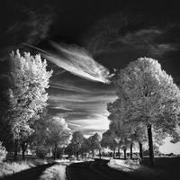 Skyfishcloud III infrared... by MichiLauke
