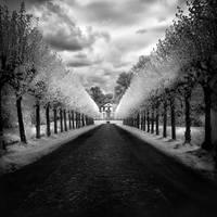 Castle Avenue infrared by MichiLauke