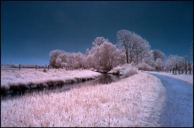 Full Sunny Springtime Day Infrared by MichiLauke