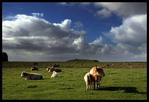 Scotland XVI - Skye... by MichiLauke