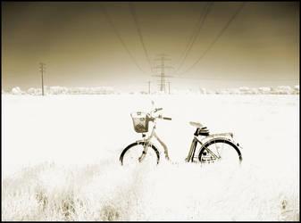 Bicycle IR... by MichiLauke
