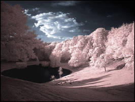 Infrared Valley... by MichiLauke
