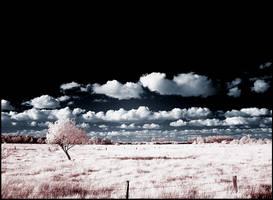 Clouds infrared... by MichiLauke
