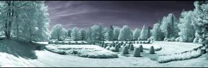 Old Hamburg Graveyard Infrared by MichiLauke