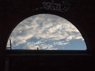 through the window by ayukat