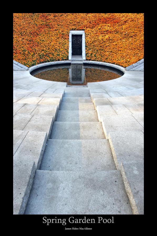 Spring Garden Pool by jamesjr2