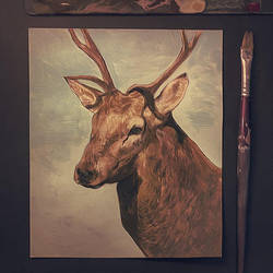 Deer sketch on acrylics by vincenthachen