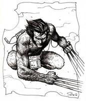 Wolverine drawing by Emmanuel-B