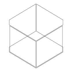 3D Cube Illusion by Erratic-Fox